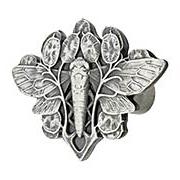 Cicada Cabinet Knob - 2