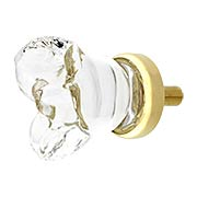 Chili Flower Clear-Glass Cabinet Knob with Brass Base - 7/8