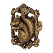 Grey Squirrel Cabinet Knob - Left Hand - 1 5/8